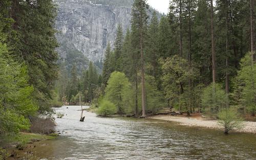 Yosemite Upper Merced River