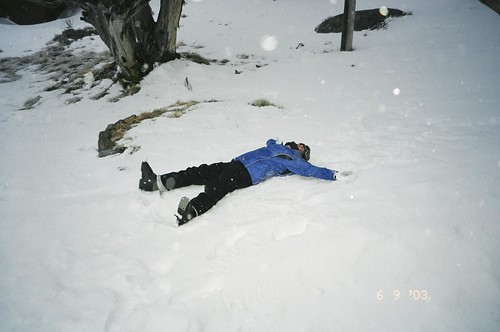 Snow 2003