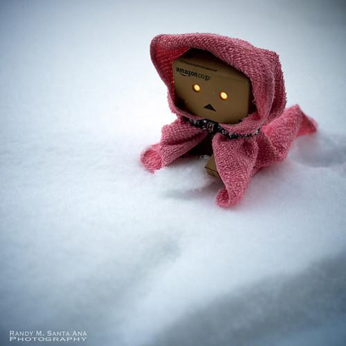 023/365:  Winter's Wrath In Springtime.