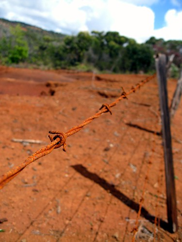 barbed wire, red dirt