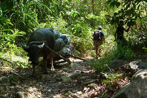 Trek to Nagkalit-Kalit Falls