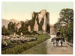 [Ross Castle, II, Killarney. County Kerry, Ireland] (LOC)