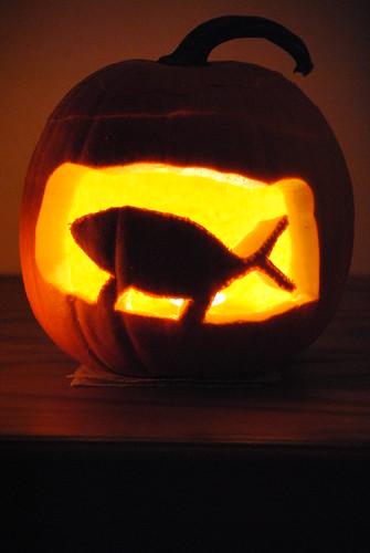 Darwin :fish: pumpkin
