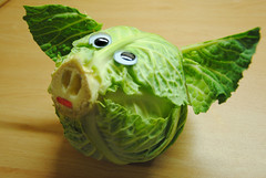 Cabbage pig