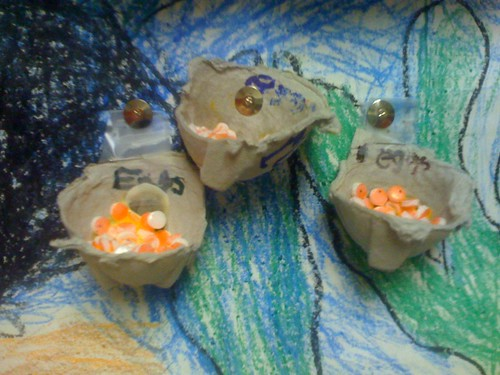 TIC Trout Eggs made of Recyclable Materials