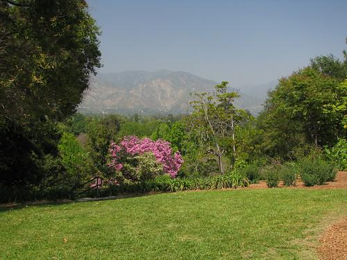 Arboretum 06