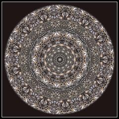 Sunflower Seed Kaleidoscope