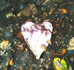 Crushed Heart - 114/365
