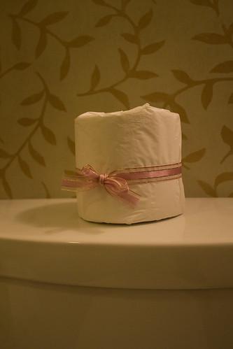 fancy toilet paper