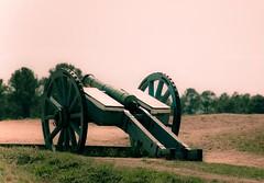 Cannon at Yorktown Battlefield