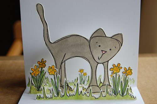 kitty likes spring 3 by you.