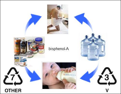 bisphenol-A prezinta riscuri prea mari pentru a i se permite in continuare prezenta in industria alimentara si plasticuri pentru industria alimentara
