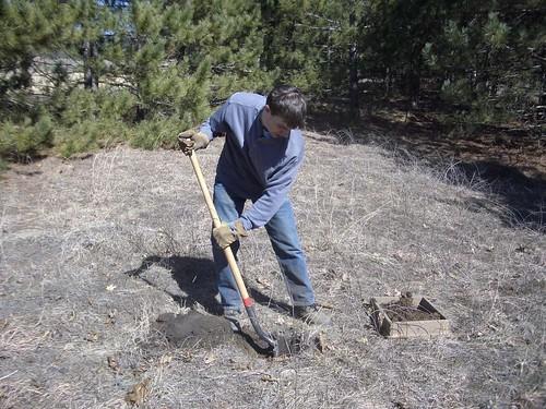 Shovel Testing