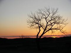 Sundown, Badlands