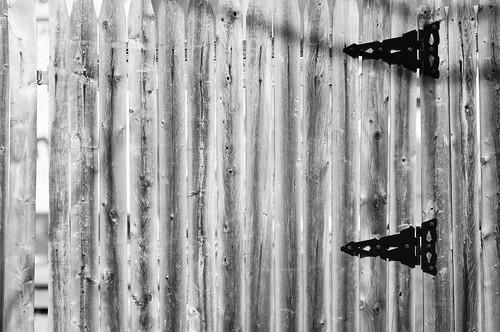 105/365 (Fence Hinge)