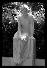 Mourning Lady With A Rose / Trauernde Frau mit...