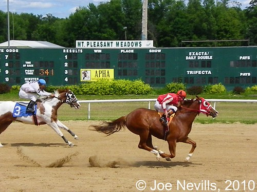 Uno Machine wins the 2010 Michigan Paint Horse Futurity