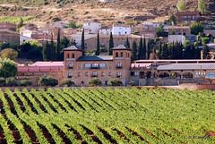 Vista parcial de Villamayor de Monjardín, con un viñedo en y la Bodegas Castillo de Monjardín en primer plano.