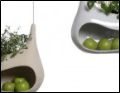 Cocoon, the planter-storage shell hybrid by Måns Salomonsen