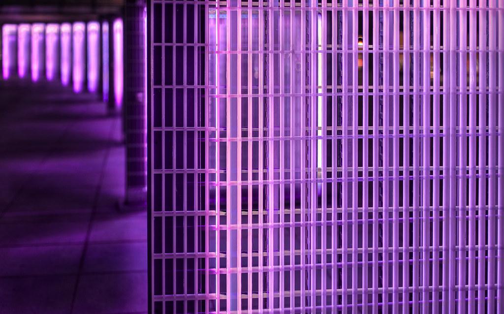 Purple Filter