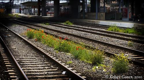 Il Stazione