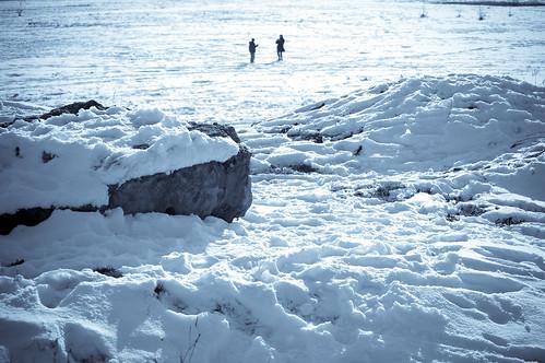Fotos polares