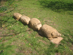 Errington Woods Hedgehog Carving