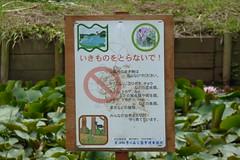 四季の森公園(Shikinomori Park, Japan)