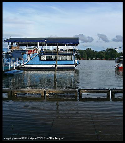 Sava river bank