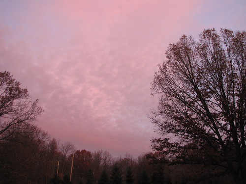 307/365 Sunrise