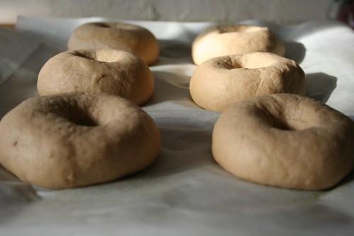 Bagels, shaped