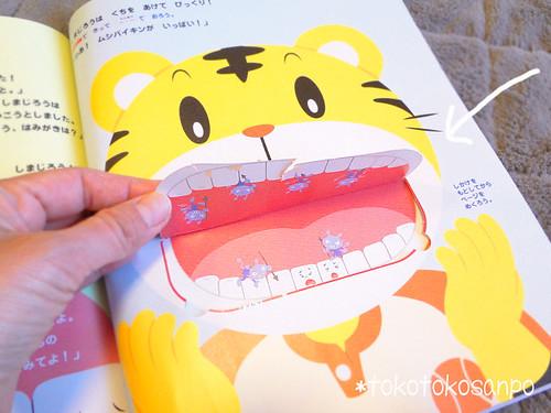 2010年5月虫歯 4歳児ピョコ「しまじろう・こどもちゃれんじ」楽しんでます♪