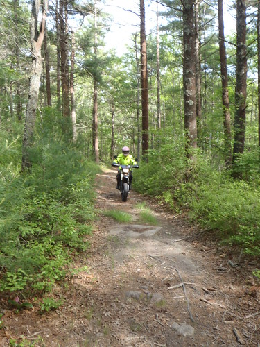 Me on Elsa the DRZ riding through the woods in Massachusetts