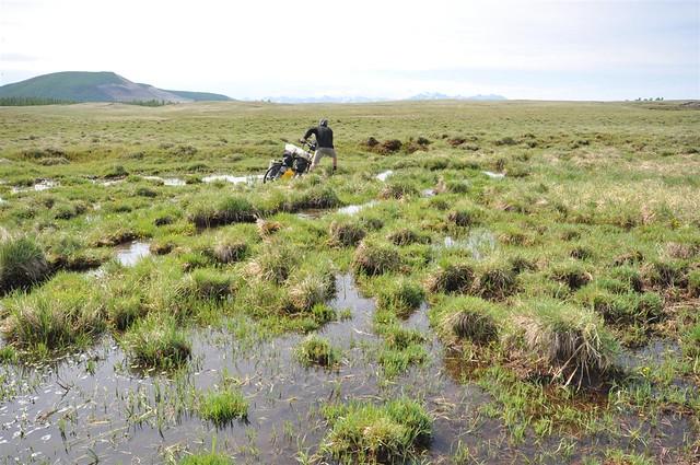 Wading through yet more marshland