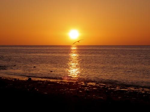 Baja Sunrise -3-