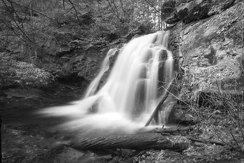 Raven Cliffs Trail