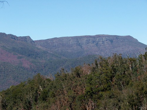 The Bluff in the Victorian Alps
