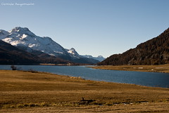 """A view to Lake Silvaplana • <a style=""""font-size:0.8em;"""" href=""""http://www.flickr.com/photos/40693716@N03/4267229890/"""" target=""""_blank"""">View on Flickr</a>"""
