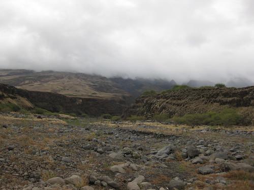 Bleak Canyon