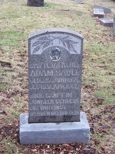 Adam Sauli