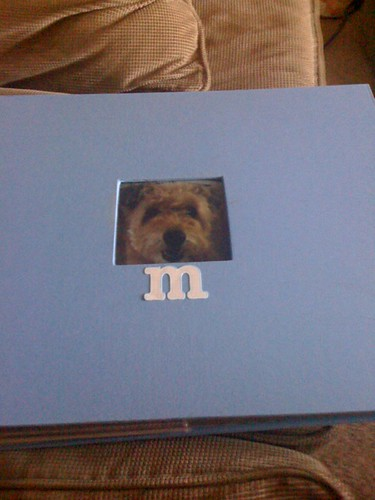 frong cover scrapbook