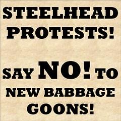 Steelhead vs NB 001