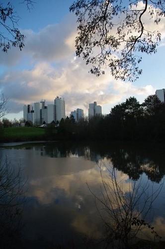 parc des ulis 30 JANVIER 2010.