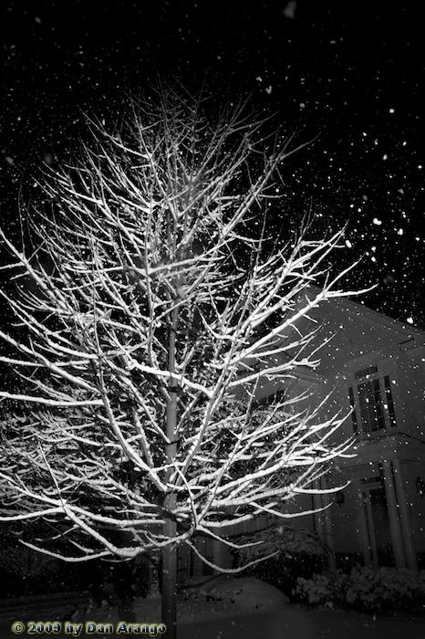 Snow Flash