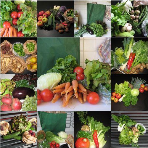 A collection of previous veggiebags