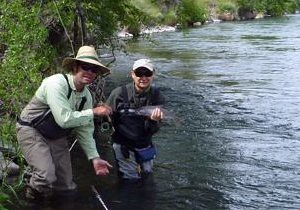 Deschutes River Redside, ate a Salmonfly Adult, cropped