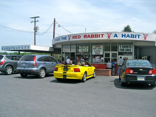 Make The Red Rabbit a Habit