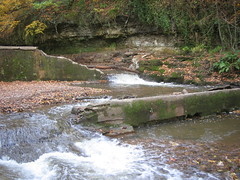Marske Mill Dam