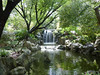 Waterfall in Chinese Garden, Sydney