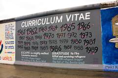 Curriculum Vitae 1961 - 1989